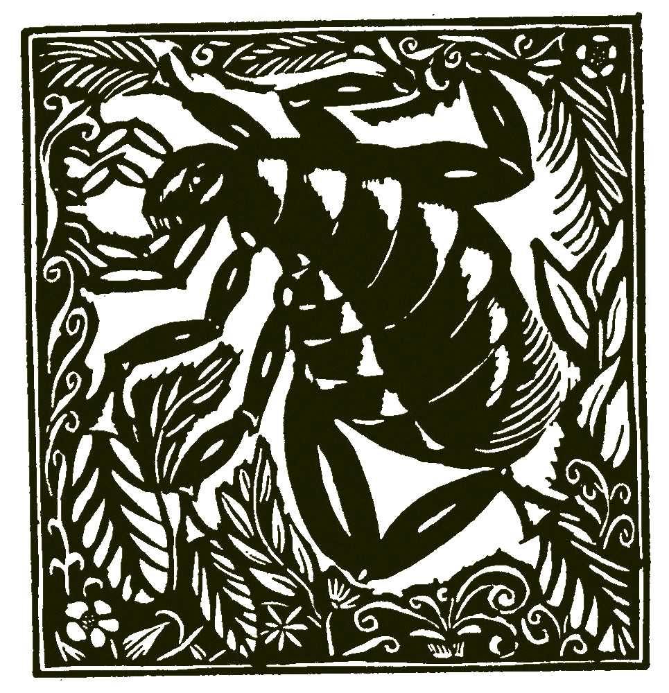 Raoul Dufy. Le Bestiaire, ou Cortège d'Orphée. (2) Alcools. Recueil de poèmes, Vitam impendere amori. Guillaume Apollinaire, Frans leren, Vivienne Stringa