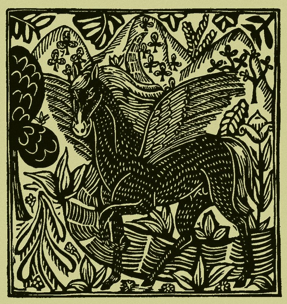 Raoul Dufy. Le Bestiaire, Guillaume Apollinaire, de gedichten uit le Bestiaire, het Bestiarium, zijn geïllustreerd met houtgravures van Raoul Dufy, Guillaume Apollinaire, Frans leren, Vivienne Stringa
