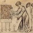 Un clerc présente une charte de privilèges par laquelle Fauvain doit être acquitté et le plaignant condamné.